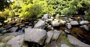 dartmeet Royaltyfria Bilder