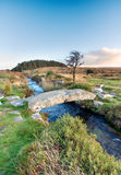 Dartmoor国家公园 库存照片