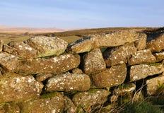 dartmoor干燥青苔石墙 免版税库存照片
