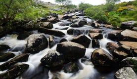 Dartmoor河 库存图片