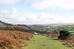 Dartmoor秋天颜色 图库摄影