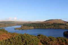 Dartmoor秋天颜色 库存照片