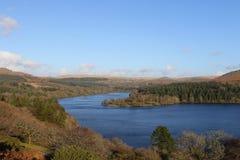 Dartmoor秋天颜色 免版税库存图片