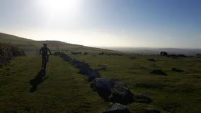 Dartmoor στο Devon στοκ εικόνα με δικαίωμα ελεύθερης χρήσης