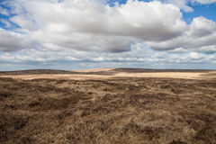 dartmoor Images stock
