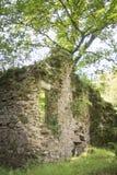 Dartmoor-Bauernhaus Lizenzfreie Stockbilder