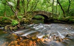 Dartmoor Bridge. An ancient stone packhorse bridge crossing the River Bovey in Hisley Woods in east Dartmoor Stock Images