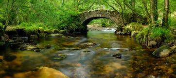 Dartmoor bro Royaltyfri Foto