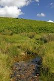 Dartmoor, Cornwall, Engeland Stock Foto's