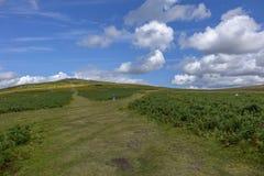 Dartmoor Devon England Reino Unido Imagens de Stock Royalty Free