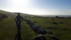 Dartmoor en Devon Photo libre de droits
