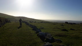 Dartmoor en Devon Photos libres de droits