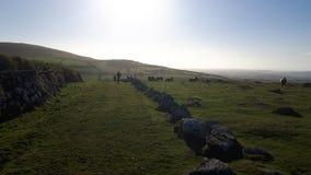 Dartmoor en Devon Image stock