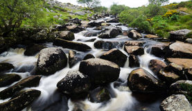 Dartmoor flod Arkivbilder