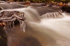 Dartmoor Fluss lizenzfreie stockfotos