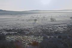 Dartmoor Frost Stock Images