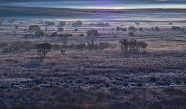 Dartmoor Frost Stock Image