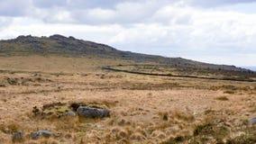 Dartmoor krajobraz, England Fotografia Royalty Free