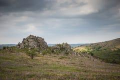 Dartmoor-Landschaft Stockbild