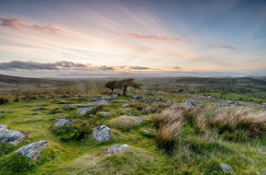Dartmoor National Park royalty free stock images
