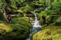 Dartmoor national park. A small stream winds its way down through the Granite rock before meeting up with the East Dart river on Dartmoor national park Royalty Free Stock Photography