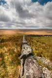 Dartmoor nationalpark royaltyfri foto