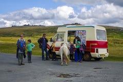 Dartmoor Pony Devon England UK Arkivbilder