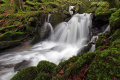 Dartmoor River. The River Dart, Dartmoor National Park, Devon, UK stock photo