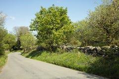 Dartmoor Stock Images