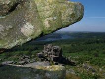 Dartmoor rock monster. Dartmoor tor rock eating rocks Royalty Free Stock Photos