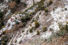 Dartmoor Royaume-Uni pendant la bête du 2018 est photo stock