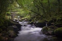 Dartmoor rzeka fotografia stock