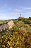 Dartmoor stone cross Royalty Free Stock Photography