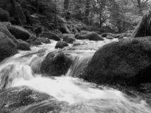 Dartmoor Stream flowing over rocks. In black and white royalty free stock image