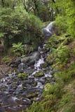 Dartmoor Wasserfall Lizenzfreies Stockbild