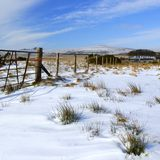 Dartmoor winter. Bleak snowy scene taken on Dartmoor South Devon near Princetown stock photography