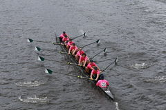 Dartmouth College races in the Head of Charles Regatta Royalty Free Stock Photos
