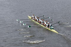 Dartmouth races in the Head of Charles Regatta Men's Master Eights Royalty Free Stock Photo