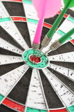 Darts. The Business topic - success. Nice game Stock Image