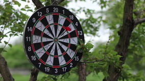 Darts arrowHD 1080p. 3 red darts arrow hits a target - HD 1080 stock footage