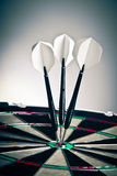 Darts Arrows Right In The Center Royalty Free Stock Photos