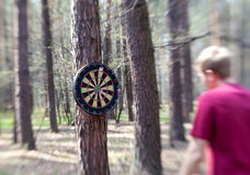 Darts boards on the tree in forest Royalty Free Stock Images