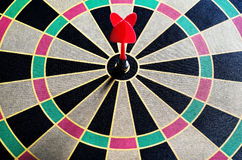 Darts hit the target in bull Royalty Free Stock Photos