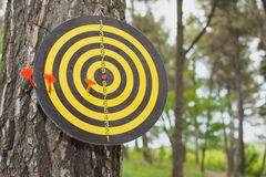 Darts miss the center Target outside in the park Stock Photography