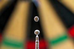 Darts refraction Stock Image