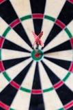 Darttavla med Stål-pilar i bullseye Arkivfoton
