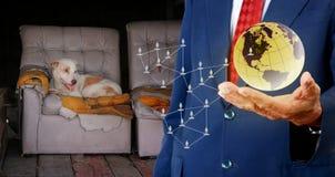Daruje pieniądze od sieci dla przybłąkanego psa, Zwierzęca dobroczynność Zdjęcia Stock