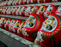 Daruma dolls Stock Images