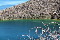 Darwin湖伊莎贝拉岛海岛(加拉帕戈斯,厄瓜多尔) 免版税库存照片