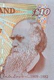 Darwin en el dinero en circulación británico imágenes de archivo libres de regalías